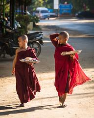 YOBEL_2018-11-30_MMR_26420.jpg (yobelprize) Tags: 2018 burma asia street yobelmuchang walking casual shaved dirt local boys bald burmese myanmar mmr children bagan muchang yobel kid monk monks candid robes kids boy asiapacific nikond810 locals southeastasia happy walk