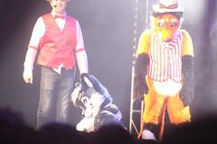 IMG_9025 (South Kitsune) Tags: fursuit furries furcon costumes cosplays caliur furry fandom