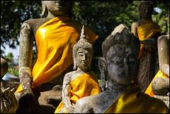 _SG_2018_11_0792_IMG_5480 (_SG_) Tags: bangkok suvarnabhumi holiday citytrip four cities asia asia2018 2018 capital thailand city ayutthaya temple phra nakhon si historical park wat sanphet
