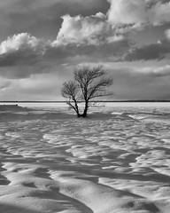 DSCF6796-Edit-2.jpg (mblonde12) Tags: britannia winter