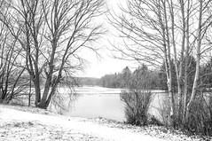 winter (ro_ha_becker) Tags: monochrome schwarzweiss zwartwit biancoenero blancetnoir blackandwhite blancoynegro landschaft landscape lake fujix100