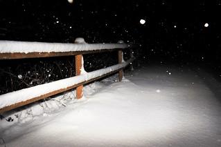 Snow fence Friday !