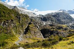 20190207-30-Rob Roy Glacier (Roger T Wong) Tags: 2019 nz newzealand robroyglacier rogertwong sel24105g sony24105 sonya7iii sonyalpha7iii sonyfe24105mmf4goss sonyilce7m3 southisland westmatukitukivalley bushwalk glacier hike landscape outdoors tramp trek walk