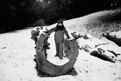 ** (Koprek) Tags: fujigw690ii fomapan 100 film analog 6x9 medium winter january arboretum opeka