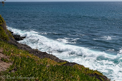 Gran Canaria-Mars19-230.jpg (jolicoeur71) Tags: espagne canaries grancanaria îles