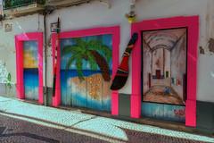 pink (try...error) Tags: alpha 6300 mural urban street