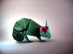 Chameleon - Rikki Donachie (Rui.Roda) Tags: origami papiroflexia papierfalten camaleon camaleão chameleon rikki donachie