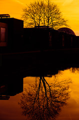 SunDown at @DotGroningen #ReflectionsByColors (17-02-2019) by DillevanderMolen #MrOfColorsPhotography #PortfolioOfColors MrOfColors.com (mrofcolorsphotography) Tags: colorful colour colourful colours cold colors mrofcolorsphotography mrofcolors mrofcolorscom photooftheday photographer photography photo sky skyporn nrofcolors dotgroningen dot city cityphotography cityphotographer building streetphotography street streetphotographer streets sunlight sun sunny sunshine sundown sunset dillenvandermolen dillen portfoliofocolors portfolio portfolioofcolors day daytime daylight light canonnederland canonphotography canon clouds cloud cloudy cloudporn shadow shadows reflection reflections reflectionsbycolors tree water waterfront groningen 500px 500pxstudio lights