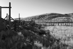 I Might Be Here If I'm Not There (nedlugr) Tags: california ca usa sanluisobispocounty carrizoplain carrizoplainnationalmonument corral fence fencepost fences hills shadows tumbleweeds weeds
