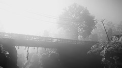 Crossing (nuvoIari) Tags: farcrynewdawn videogame fog mist bridge tree blackandwhite bw