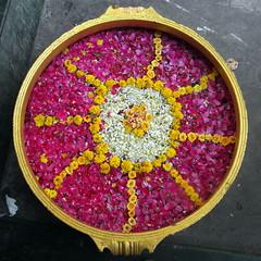 tamil nadu flower moon (1) (kexi) Tags: chennai tamilnadu india asia flowers round decoration samsung wb690 february 2017 square happyplanet asiafavorites