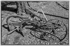 Old Farm Implement (Johann (Still Me!)) Tags: abandoned oldstuff farmimplement obsolete antique johanndejager ef24105mmf4lisiiusm canoneos5dmarkiv diegutealtezeit