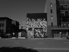 autumn 2017 / 3 (peaceblaster9) Tags: sanfrancisco street autumn sunlight walk ricoh gr blackandwhite bnw bw blackwhite サンフランシスコ ストリート スナップ 白黒 モノクロ