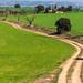 Els Plans i el cementiri de Montcortès de Segarra