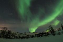 Tromsö 2019 (274 von 699) (pschtzel) Tags: nordlicht norwegen2019 tromso