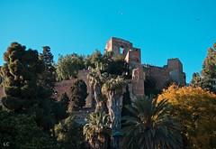 alcazaba (lauracastillo5) Tags: city cityscape malaga spain nature outdoors trees blue sky architecture green