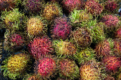 Mysterious 27 (arbyreed) Tags: arbyreed rambutan nepheliumlappaceum fruit hairyfruit tropicalfruit close closeup colorful colorfulfruit green red yellow pink exotictropicalfruit