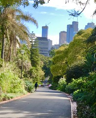Path to the city (jglsongs) Tags: melbourne australia fitzroygardens