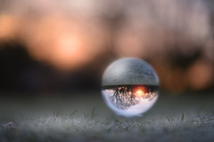 Frosty Balls... (KissThePixel) Tags: sunrise crystal crystalball crystalballphotography sphere glass ball glassball reflection frost frosty frostymornings january kissthepixel nikon nikond750 50mm sigmaf14 sigmaart bokeh bokehlicious dofalicious sky grass perspective pov