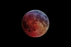 Moon eclipse (Franck) : just before Totality (Club Astro PSA) Tags: astronomie lune eclipse astrophoto astronomy moon red rouge blood bloodmoon sky ciel deep night nuit star stars etoile dark noir sombre astro phase totaly shadow earth ombre terre totale totalité totality 2019 first premiere lunar lunaire