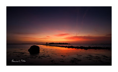 Lovers Sunrise (RonnieLMills 6 Million Views. Thank You All :)) Tags: valentines day sunrise dawn early morning islandhill rough island strangford lough comber newtownards county down northern ireland loverssunrise ronnielmills landscape photography