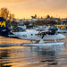 A Twin Otter in Harbour Air Livery Looking Lively in the Victoria Harbour Sunrise