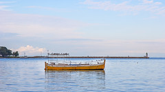 Gulls (JLM62380) Tags: rovinj colors croatia ville urban town harbor port sea ocean mer croatie barque