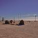 Salton Sea Yatch Club