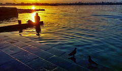 AN BLISSFUL AFTERNOON (Arunabha Kundu) Tags: ngc travel sunset color lightandshadow ambiance mobilephotography woman pigeons