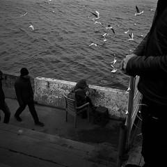 Uskudar Seaside (AnniversaryRoad) Tags: 120 120film 400asa 400iso 75mm asia bw bosphorus bosporus constantinople islam istanbul kodak kodaktmax middleeast muslim turk turkey turkish uskudar analog analogphotography analogue birds black blackandwhite clouds film filmgrain filmphotography mamiya mamiya6 mediumformat monochrome outdoor outside people rangefinder sky street streetphotography water white women ãskã¼dar