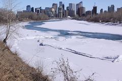 View over the icy Bow River to downtown Calgary (Jon Dev) Tags: winter officebuildings condotowers ice alberta canada bridge urban city