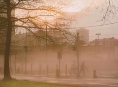 Foggy afternoon in New Orleans (chenshen.lv) Tags: 50mm nikon sigma afternoon railway railroad neworleans foggy fog