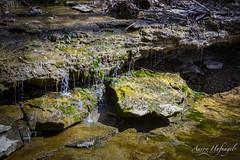 Slow Trickle of Drip (Aaron Hufnagel) Tags: nikon nikond600 d600 tokina tokina2870mm tokinaatx atx 2870mm madison madisonindiana cliftyfalls cliftyfallsstatepark indianastatepark statepark nature outdoor water creek stream waterfalls falls