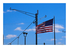 Freedom's Just Another Word (TooLoose-LeTrek) Tags: flag usa security camera surveillance