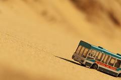 Did I miss Bir Hakeim Station? (Le.Patou) Tags: world100f challenge macromondays aprilfools'day desert beach sand fz1000 bus line station stop joke yellow closeup macro pun