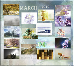 Mad as a March hare? (Elisafox22) Tags: elisafox22 march 2019 collage snapshot images summary thumbnails border leaves flowers landscape snow trees plum plumblossoms abstract macro kokeshi kokeshidoll catkins mist fences marbles pink japaneseplum indoor stilllife spring blackandwhite postprocessing aberdeenshire scotland elisaliddell©2019