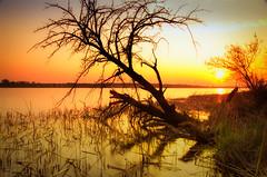 Zalew zegrzyński (slaant21) Tags: zachódsłońca landscape sunset czerwony yellow żółty lake lat krajobraz jezioro red zegrzepołudniowe mazowieckie poland pl