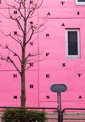 pink wall (t.kunikuni) Tags: 東京都 日本 jp 千代田区 アテネフランセ ピンク tokyo japan chiyodaku athénéefrançais pink