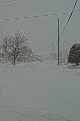 View of a Blizzard/White-Out, Looking West (sjrankin) Tags: 18january2019 edited kitahiroshima hokkaido japan hdr winter snow wind road houses neighborhood blizzard whiteout blowingsnow lines wires