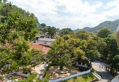 Kandy landscape