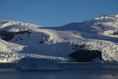 IMG_6893 (y.awanohara) Tags: cuvervilleisland cuverville antarctica antarcticpeninsula icebergs glaciers blue january2019