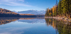 Fall in the Swan (ebhenders) Tags: montana fall larch holland lake mission mountains swan valley water trees