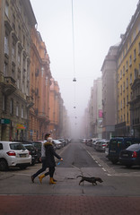 Walking the Dog (Ash and Debris) Tags: hungary street people walking citylife crossroad weather perspective animal streetlife morning budapest urban road pet crossing couple dog city fog mist europe walk