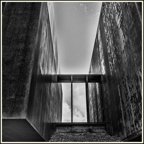 Lines & Beyond #37