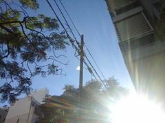St.John (luzYano) Tags: sun street day sol dia luz light calle verano summer bag bolsa american beauty