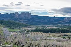 Roques de Benet (Jordi Nadal, Barcelona Catalunya) Tags: catalonia catalunya corberadebre parcnaturalportsdetortosabeseit roquesdebenet tarragona terraalta landscape naturalpark paisatge parcnatural