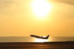 Sunset flight (Teruhide Tomori) Tags: airplane aircraft jet japan airport chubucentrairinternationalairportnagoya セントレア 日本 飛行機 旅客機 ジェット機 飛行場 中部国際空港 愛知県 ana boeing737 ボーイング737 全日空 allnipponairways japon sunset sea ocean