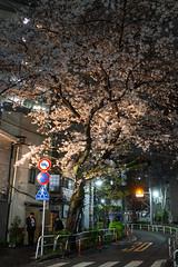 Tachiaidoro Street (ubic from tokyo) Tags: 35mm dscrx1 japan rx1 sony tokyo carlzeiss oimachi 大井町 東京 立会道路