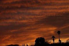 Sunset 3 5 19 #05 (Az Skies Photography) Tags: sun set sunset dusk twilight nightfall sky skyline skyscape rio rico arizona az riorico rioricoaz arizonasky arizonaskyline arizonaskyscape arizonasunset cloud clouds red orange yellow gold golden salmon black march 5 2019 march52019 3519 352019 canon eos 80d canoneos80d eos80d canon80d