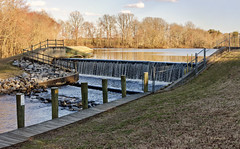 Brian_Unicorn Lake Spillway 2 LG Pano_031719_2D (starg82343) Tags: 2d brianwallace outdoors outside easternshoreofmd maryland 31719 unicornlakeeveninglight eveninglight earlyspring unicornlake falls unicornlakefalls unicornlakespillway unicornlakespill waterfall trees wooded water stream riprap rocks lighting millingtonmaryland millingtonmd md fishhatchery easternshoreofmaryland lakeandfalls unicornlakeandfalls serene serenity tranquil tranquility peaceful scenic picturesque lateevening lake lightandshadow rapids damn pilings branches
